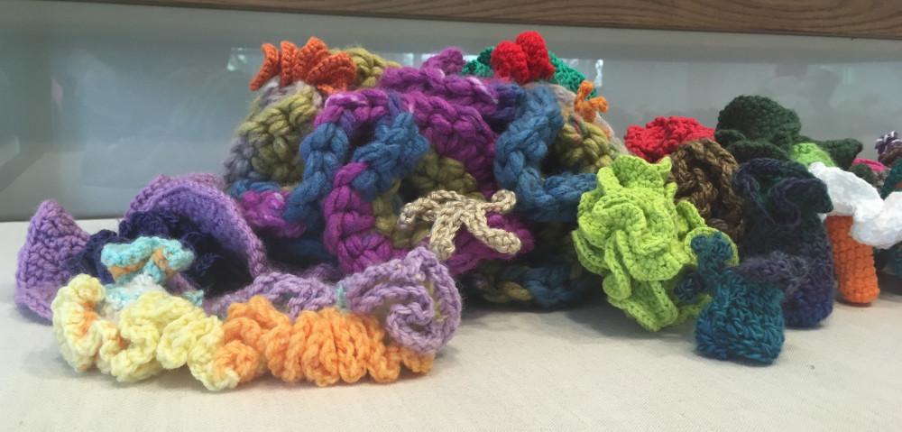 A Hyperbolic Crochet Coral Reef Display Gallery Southwestern