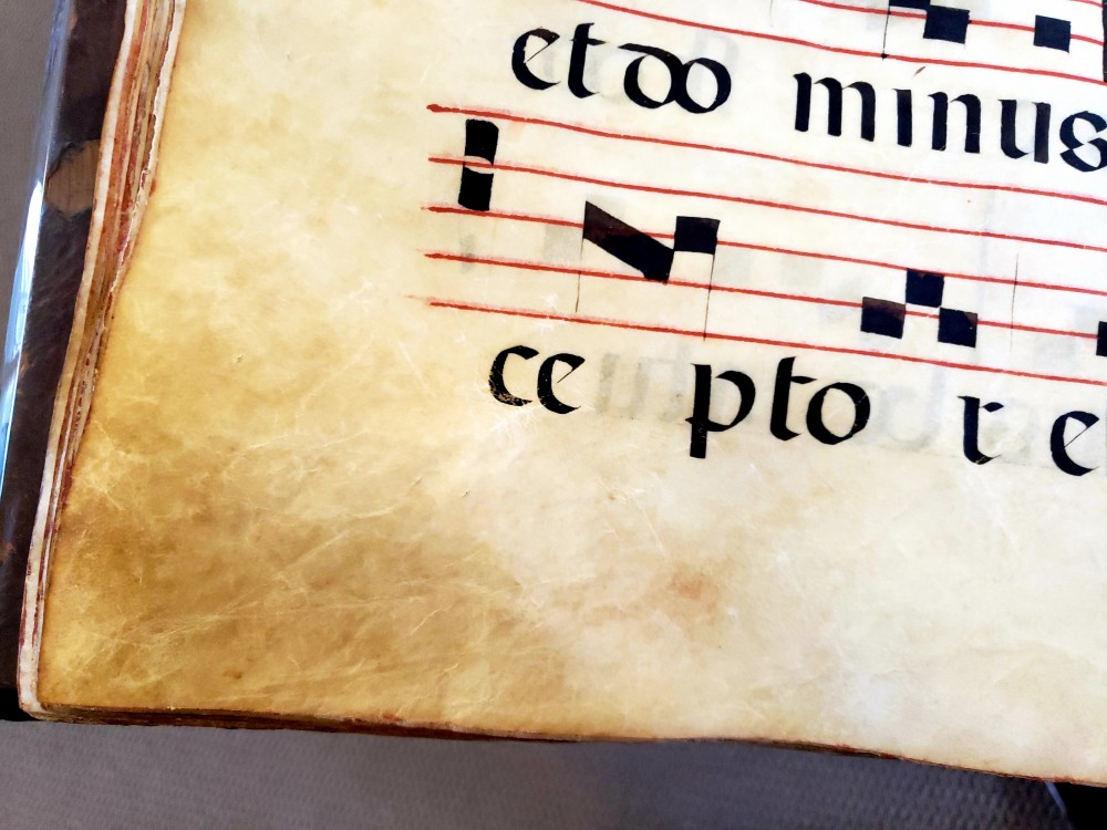 Close-up of [Graduale] showing details in the vellum.