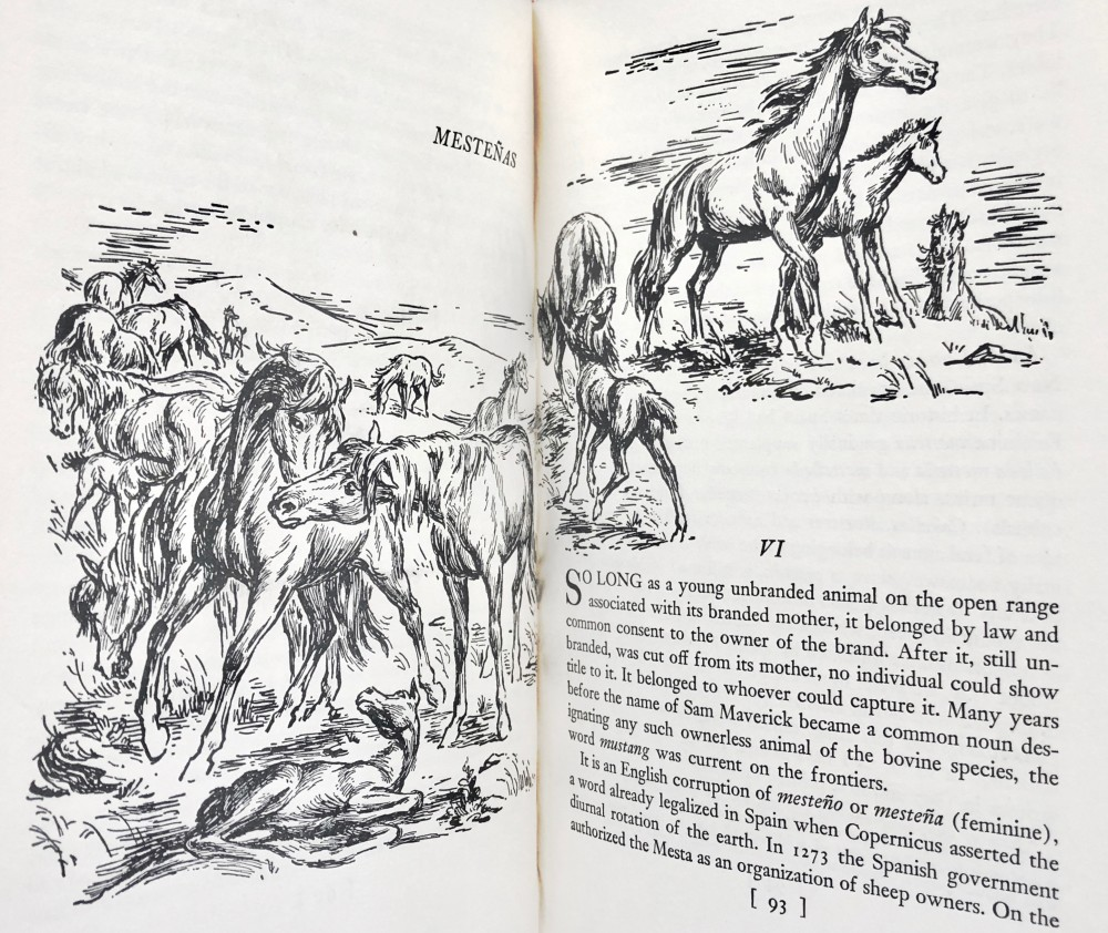 "Illustrations by Charles Banks Wilson for ""The Mustangs"""