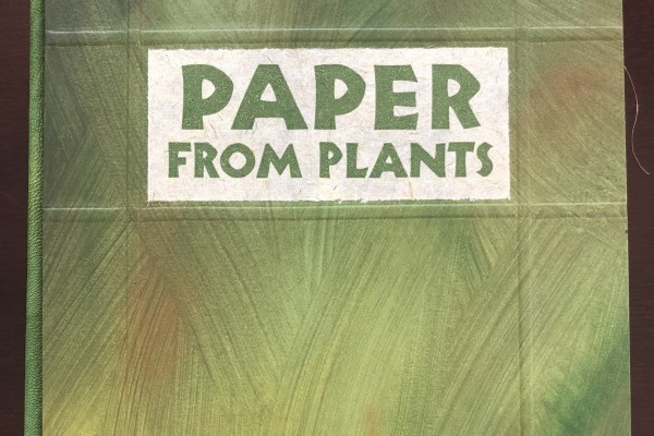 Paper from Plants
