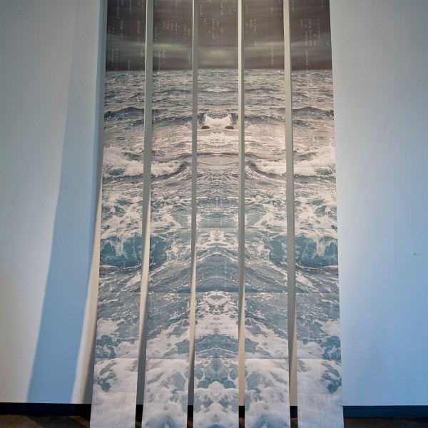 Nicole Pietrantoni, Precipitous, 14 feet x 6 feet, Inkjet on Awagami Inbe Thick, folded and bound into 5 accordion books, Text written by Devon Wootten, 2015.