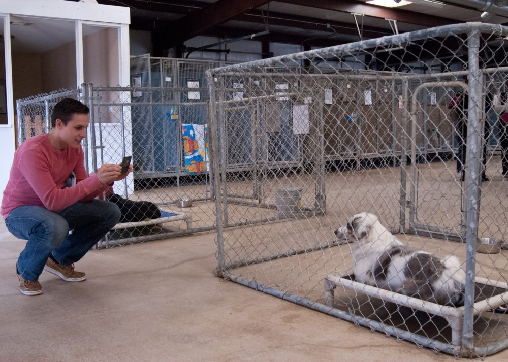 Nick Moore photographs one of the dogs up for Adoption at Texas Humane Heroes, which was formerly known as the Humane Soci...