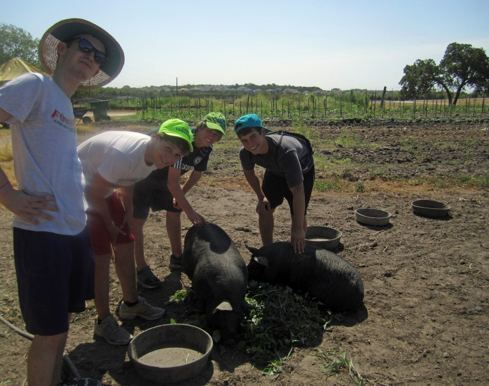 Students in Molly Jensen's  First-Year Seminar  visit Green Hill Farms east of Austin.
