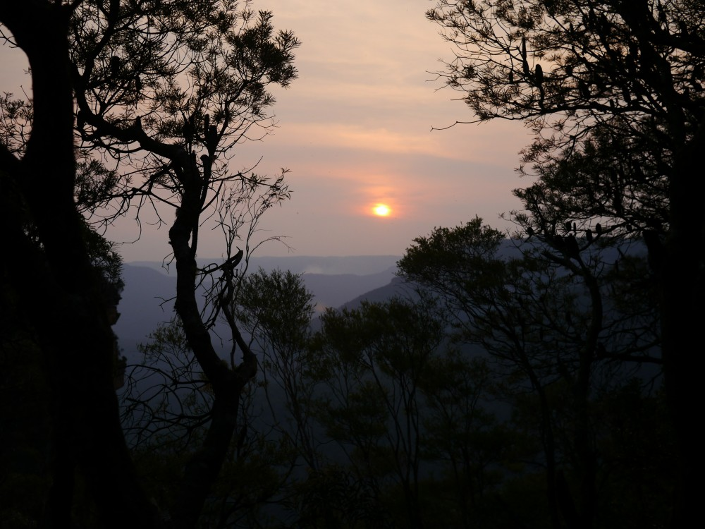 My last sunset in the Blue Mountains. If you look closely, you can see smoke from the bushfires i...
