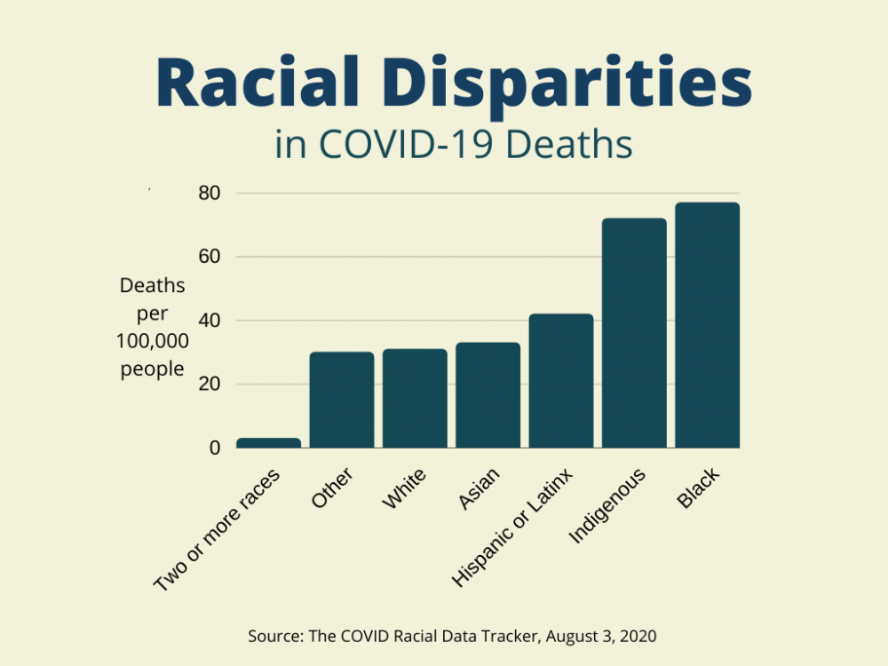 Racial Disparities Infographic
