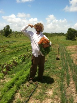 2007 graduate Alex McPhail has started a farm on a patch of family land between Houston and Galveston.