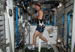 This photo taken in June 2013 shows European Space Agency astronaut Luca Parmitano exercising on a treadmill in the Intern...