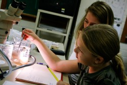 Meredith Liebl and Kristen Swisher are studying which liquids dissolve eggs.