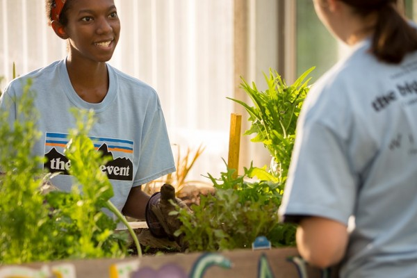 Southwestern University Recognized in the The Princeton Review Guide to Green Colleges 2021 Edition
