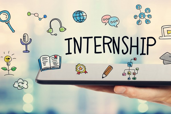 Internships in the virtual world