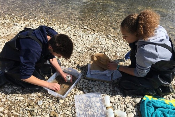 Scout gathers macroinvertebrates to take back to the lab and identify while Vanessa picks any extra insects off the sampling net.